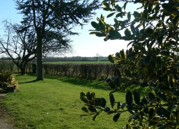 Thumbnail 3 bed detached house to rent in Snelland, Lincoln, Lincolnshire.