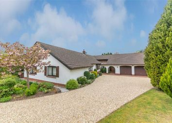 Thumbnail 4 bed bungalow for sale in Millbrook, Llangwm, Near Usk, Monmouthshire