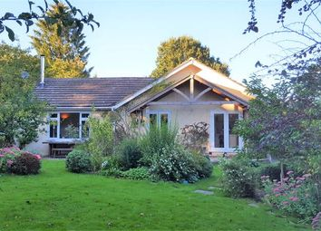 Thumbnail 4 bed bungalow to rent in Woodcote Road, Forest Row