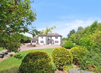 Thumbnail 5 bed detached house for sale in Ballincolly, Charleville, Co.Cork, Charleville, Cork
