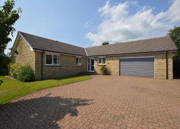 Thumbnail 4 bed bungalow for sale in Grange Park, Rennington, Northumberland