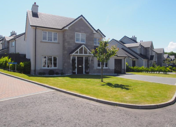 Thumbnail 4 bed detached house to rent in Deeside Brae, Aberdeen AB12,