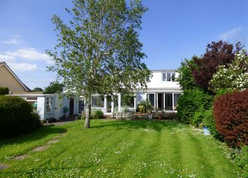 Thumbnail 5 bedroom detached house for sale in South Road, Lympsham, Weston-Super-Mare