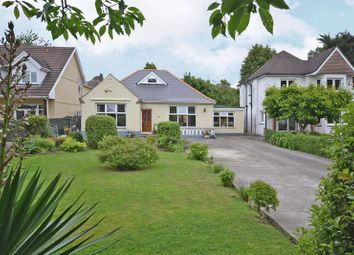 Thumbnail 3 bed detached bungalow for sale in Stunning, Spacious Bungalow, Risca Road, Newport