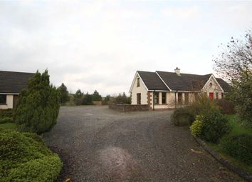 Thumbnail 4 bed detached bungalow for sale in Dundrum Road, Dromara, Down