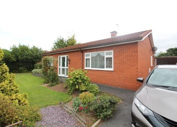 Thumbnail 3 bed detached bungalow to rent in Panson Place, Putson, Hereford