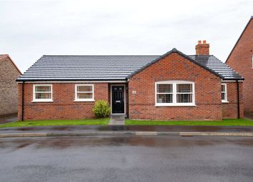 Thumbnail 3 bed bungalow for sale in Lowther Avenue, Moulton, Spalding