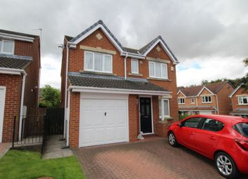 Thumbnail 4 bed detached house for sale in Chollerton Drive, Bedlington