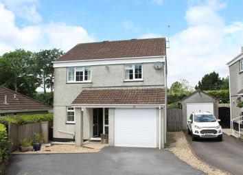 Thumbnail 4 bed detached house for sale in Brakefield, South Brent