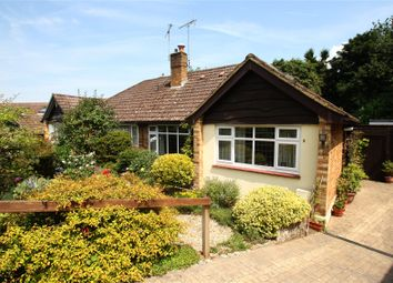 Thumbnail 3 bed semi-detached bungalow for sale in Tilgate Common, Bletchingley, Redhill