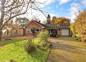 Thumbnail 4 bed detached bungalow for sale in Lymington Bottom, Four Marks, Hampshire
