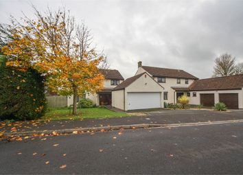 Thumbnail 4 bed detached house for sale in 29 St Medard Road, Wedmore, Somerset