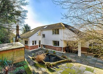 Thumbnail 6 bed detached house for sale in The Limberlost, Welwyn