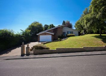 Thumbnail 4 bed detached house for sale in Denevale, Yarm