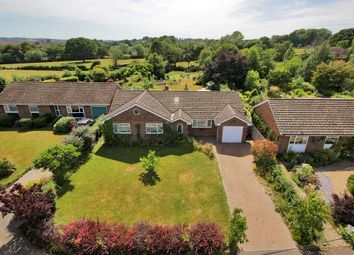 Thumbnail 3 bed detached house for sale in Oaks Forstall, Sandhurst, Kent
