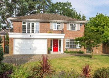 Thumbnail 5 bedroom detached house to rent in Farleton Close, Weybridge
