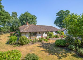 Thumbnail 4 bedroom detached bungalow to rent in Sowton Village, Exeter