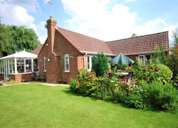 Thumbnail 3 bed detached bungalow for sale in Middle Road, Whaplode, Spalding