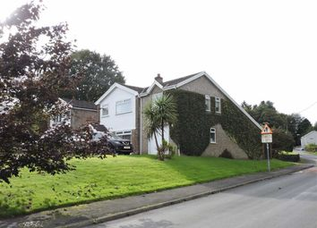 Thumbnail 5 bed detached house for sale in Fforest Fach, Tycroes, Ammanford