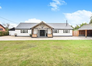 3 bed detached bungalow for sale in Ferry Road, Chelmsford CM3
