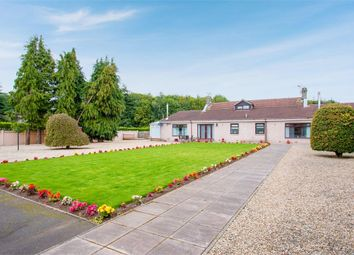 Thumbnail 5 bedroom detached house for sale in Bannockburn, Bannockburn, Stirling