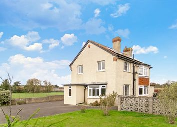 Thumbnail 4 bed detached house for sale in Field Road, Langport, Somerset