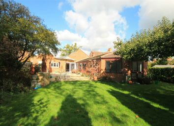 Thumbnail 4 bedroom detached bungalow for sale in Upper Bucklebury, Reading, Berkshire