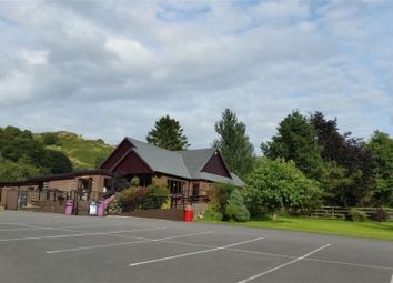 Thumbnail Restaurant/cafe for sale in Corwen, Conwy