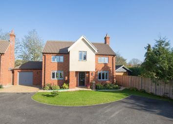 Thumbnail 4 bed detached house for sale in Mace Drive, Beeston, King's Lynn