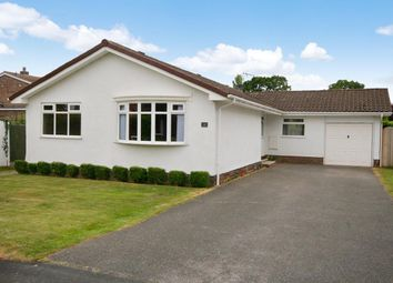 Thumbnail 4 bed detached bungalow for sale in Middlecroft, Guilden Sutton, Chester