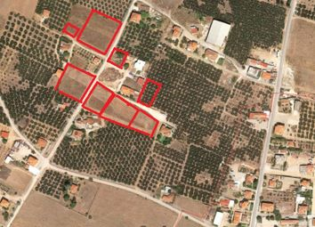Thumbnail Land for sale in Ormylia, Chalkidiki, Gr