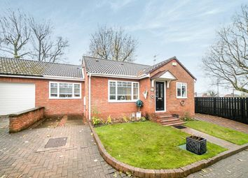 Thumbnail 2 bed bungalow for sale in Orchard Court, Ryton
