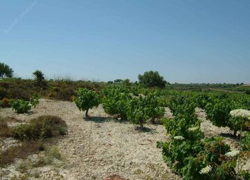 Thumbnail Land for sale in Kathikas, Paphos, Cyprus