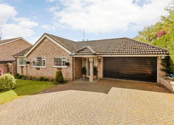 Thumbnail 3 bed detached bungalow for sale in Priory Road, Wollaston, Wellingborough, Northamptonshire