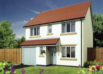 Thumbnail 4 bed detached house for sale in Newly Built, Modern & Contemapry, Barnstaple