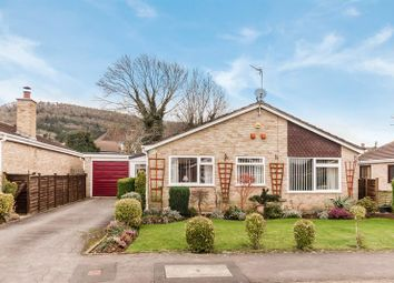 Thumbnail 3 bed detached bungalow for sale in Vectis Close, Ross-On-Wye