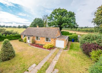 Thumbnail 3 bed detached bungalow for sale in Green Lane, Great Barton, Bury St. Edmunds