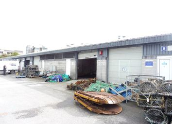Thumbnail Light industrial to let in Unit 9, Plymouth Fish Market, Fish Quay, Plymouth, Devon