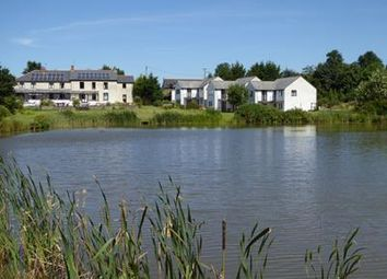 Thumbnail Leisure/hospitality for sale in Clawford Lakes Complex, Clawton, Holsworthy, Devon