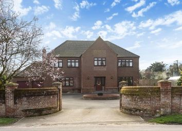Thumbnail 5 bedroom detached house for sale in The Street, Ringland, Norwich