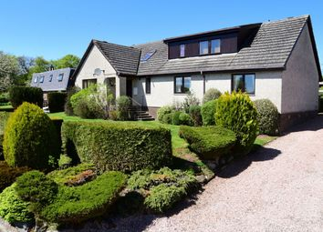 Thumbnail 6 bed property to rent in Westbank Gardens, Westmuir, Kirriemuir