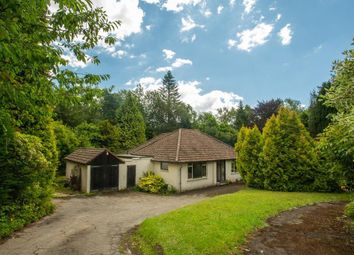 Thumbnail 3 bed detached bungalow for sale in Possingworth Close, Cross In Hand, East Sussex