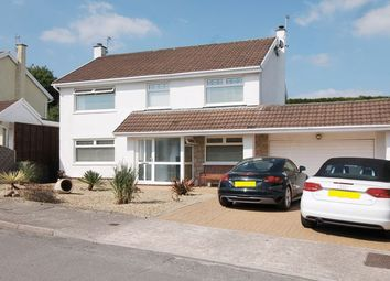 Thumbnail 4 bed detached house for sale in Park Lane, Groesfaen