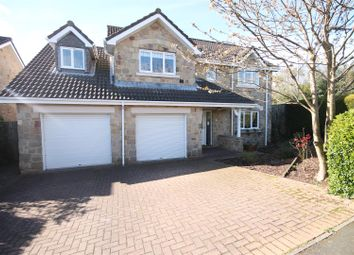 Thumbnail 5 bed detached house for sale in Raven Court, Esh Winning, Durham