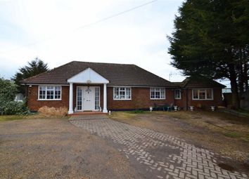 Thumbnail 4 bed bungalow for sale in Old House Lane, Roydon, Essex