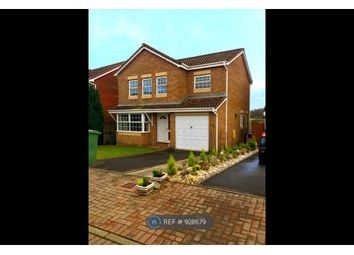 Thumbnail 4 bed detached house to rent in Bethesda Grove, Falkrik