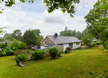 Thumbnail 4 bedroom detached bungalow for sale in 3 Wynlass Park, Windermere, Cumbria