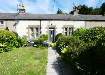 Thumbnail 2 bed terraced house for sale in Cruddas Terrace, Bellingham, Hexham