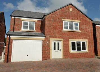 "Thumbnail 4 bed detached house for sale in ""The Roseberry "" at Willow Walk, Crediton"