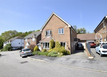 Thumbnail 4 bed detached house to rent in Welton Rise, St Leonards-On-Sea, East Sussex